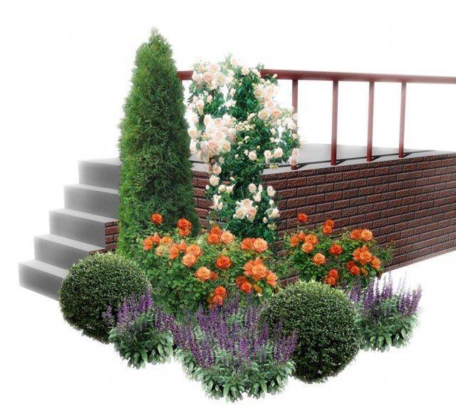Композиция с розами в ландшафтном дизайне